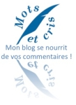 commentaire blog1