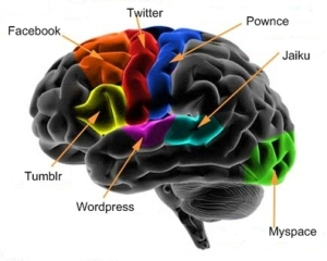 diagrambraincortex